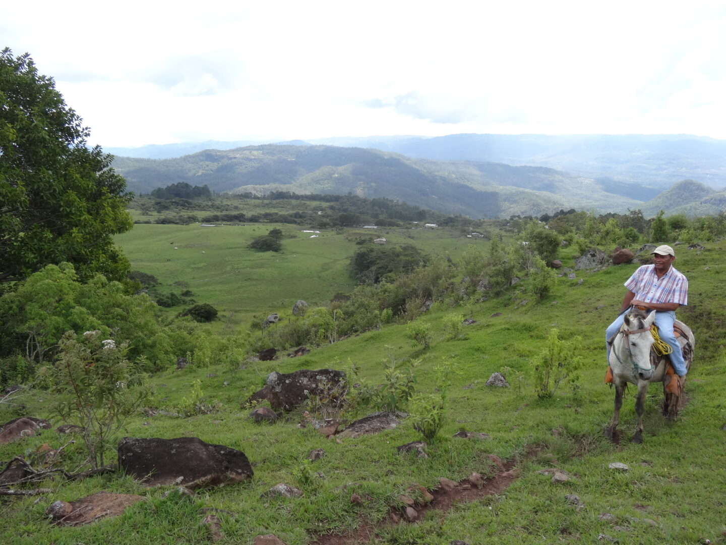 Honduras Farmer On Horse Landscape